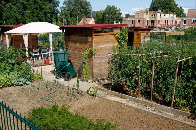 Jardins familiaux un enfumage de plus reagir pour for Jardin ouvrier
