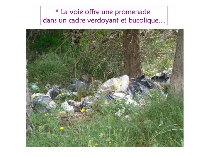 Beaucaire- ville touristique 2-4