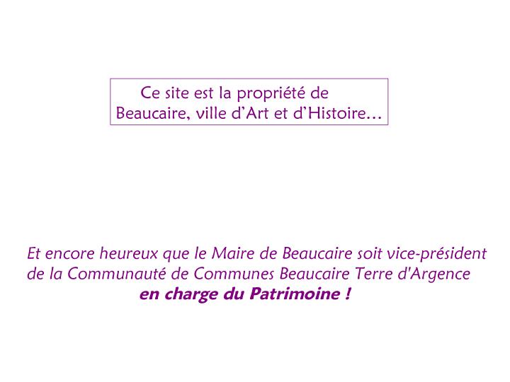 Beaucaire- ville touristique 3-5